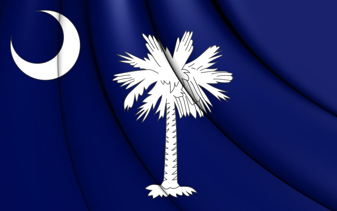 What Types of Auto Insurance Are Required in South Carolina?